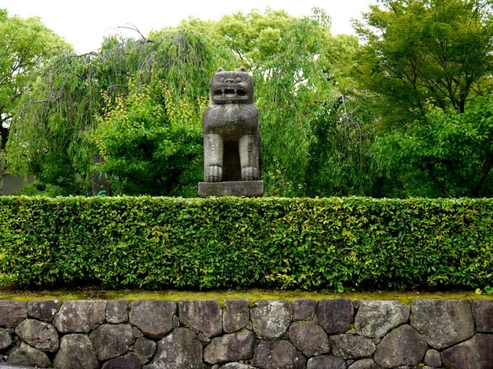 Stone lion and trimmed hedges