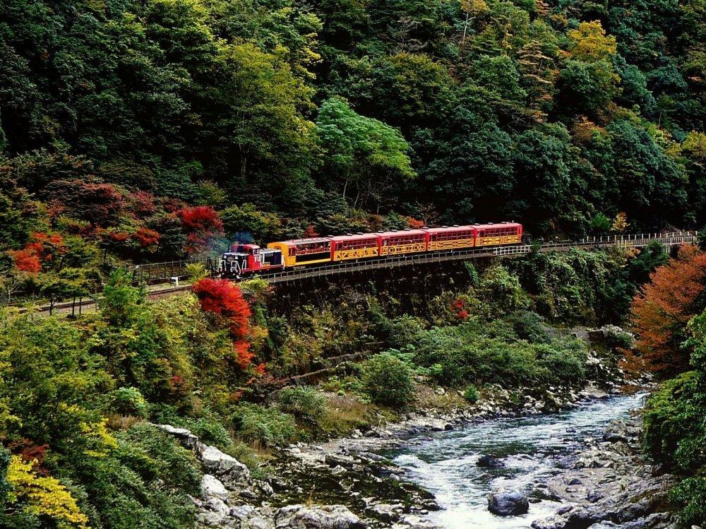 호즈가와 협곡을 가로지르는 '로맨틱 열차'