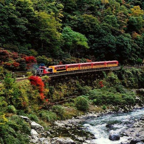 Arashiyama's Romantic Train