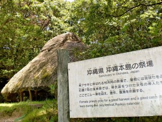 Còn đây là một khu bảo tồn ở Okinawa