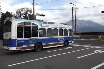 <p>Another of the buses</p>