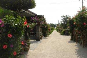 Street scene in Taketomi Village