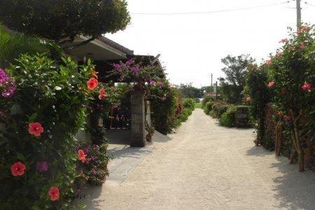 Pulau Taketomi Okinawa