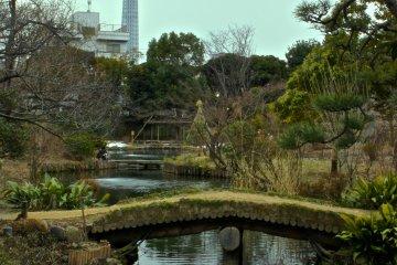 무코지마 백화원의 배경에는 도쿄 스카이트리. 맑고 푸른 하늘에 황혼 장면을 찍으러 다시 와야겠다