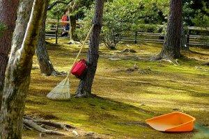 Jardim de musgo por trás do Kinkaku