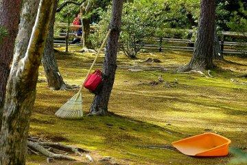 <p>Moss garden behind Kinkaku</p>