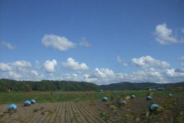 Road trip through Hokkaido countryside.
