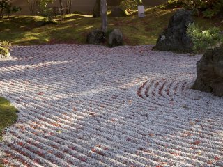 A well kept Zen garden is the perfect place for a tree to cast a shadow.