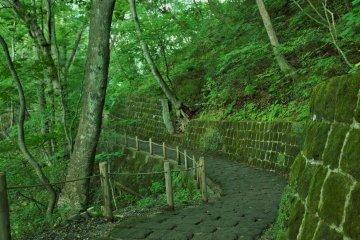 Kirifuri Falls of Nikko