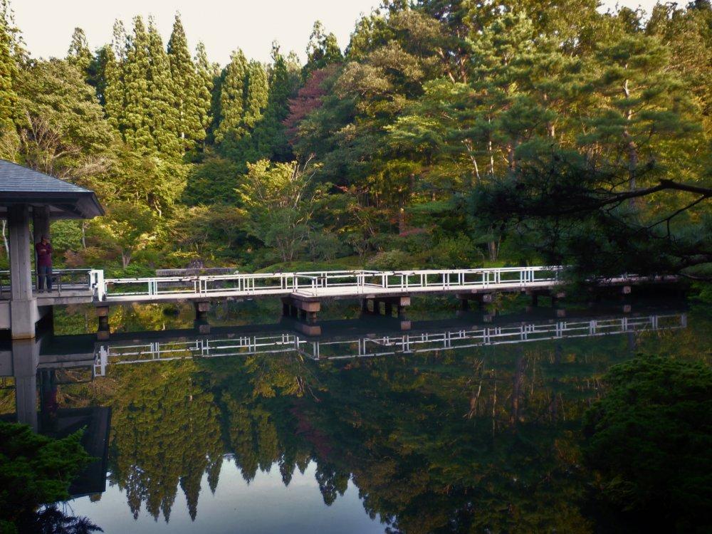 연못에는 공원의 파노라믹 전경을 볼 수 있는 다리가 있다.