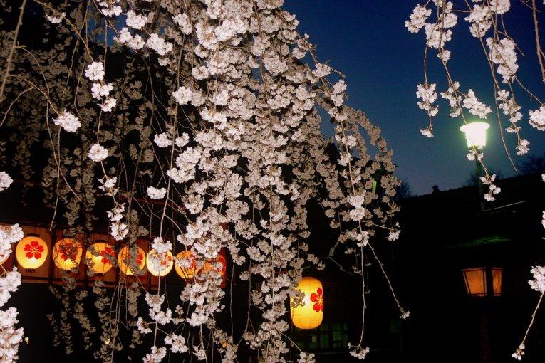Весна в храме Хирано