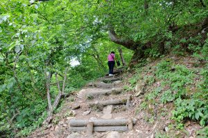 ทางขึ้นเขาไปจุดชมวิวมุมสูงของหมู่บ้านชิราคาวาโก