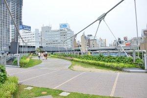สะพานข้ามไปอีกฝั่งที่รายล้อมไปด้วยสีเขียวของพุ่มไม้และดอกไม้