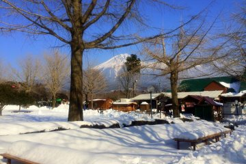 <p>Makaino Farm has rarely -- if ever -- been covered in waist-deep snow. So most visitors had their lunches inside their cars.</p>