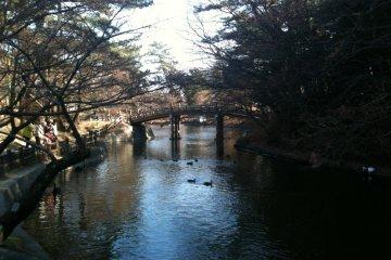 Okazaki City Higashi Park and Zoo
