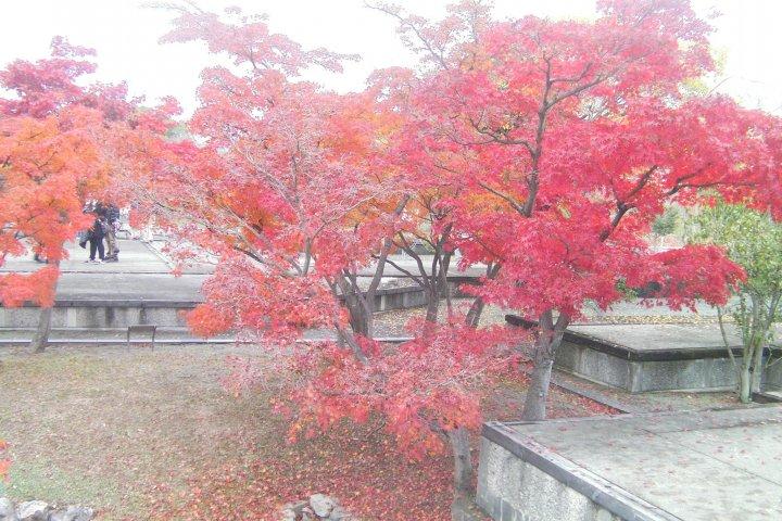 โบราณสถานปราสาทเอโกะ