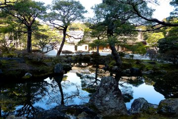 <p>Most of the good-looking pine trees and rocks here were originally taken from other temples and gardens</p>