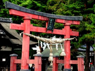 An ornamental rope hangs from the torii in the shrine grounds