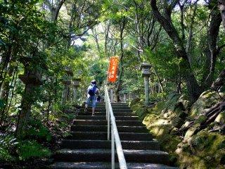 Những bậc thang đá bất tận