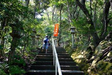<p>Endless stone steps</p>