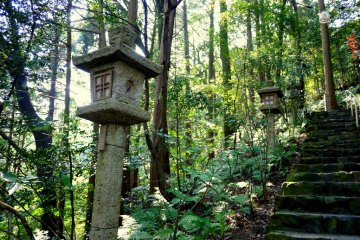 <p>There were many stone lanterns beside the steps</p>
