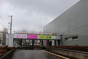 福井県立美術館外観
