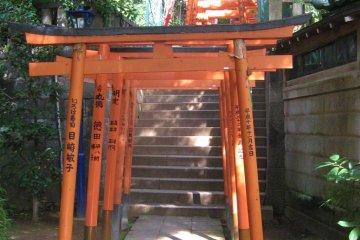 Corridor of torii leading to Gojo Shrine