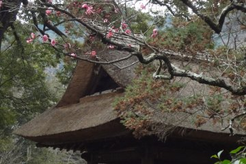 So-un-ji Temple in Hakone-Yumoto