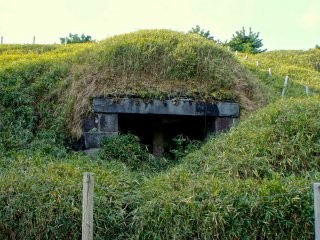 The bunker in the ruins of The Third Daiba. Nature has reclaimed a lot of it and there is no chance of venturing to explore it in any way.