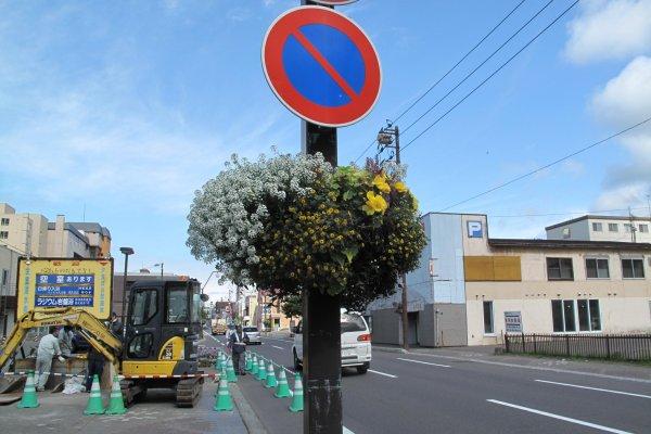 ถนนดอกไม้แห่งเมืองโทยา