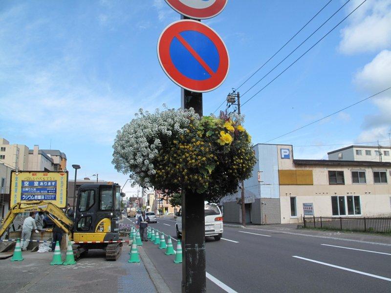 <p>ถนนดอกไม้แห่งเมืองโทยา</p>