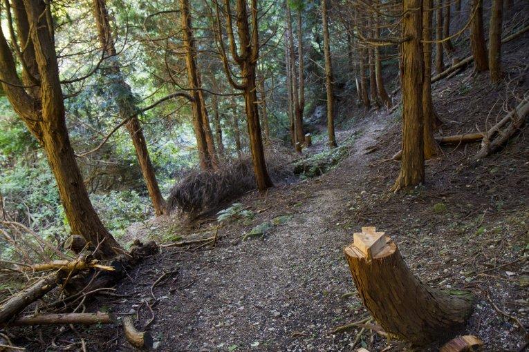 Hiking Mt. Kana
