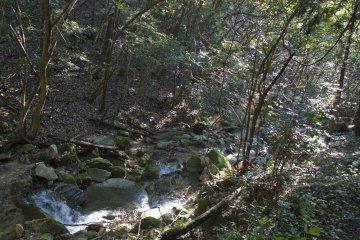 <p>You&#39;ll cross mountain streams along the way</p>