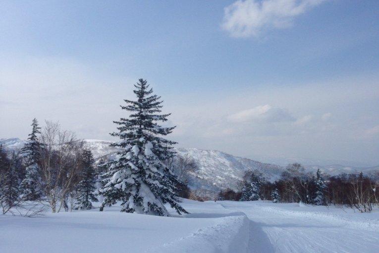 キロロリゾート in 北海道、極上のパウダースノーでスキー!