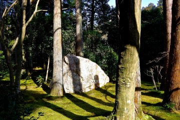 <p>There are many rocks in many places in the precinct of Ryoan-ji Temple</p>