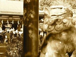 Guardian of the shrine gates