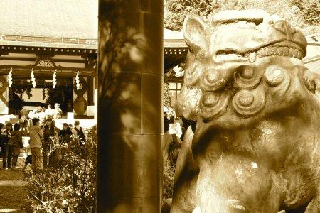 Vẻ đẹp đền Afuri Jinja