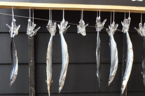 Dried fish are a specialty of this district.