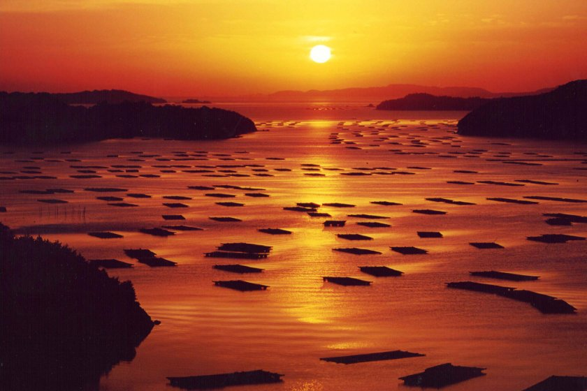 Sunrise view of oyster beds in Hinase Town