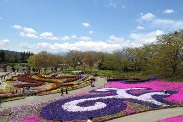 在公园入口处美丽的花朵。