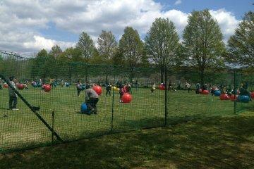 Игровая площадка с надувными шарами.