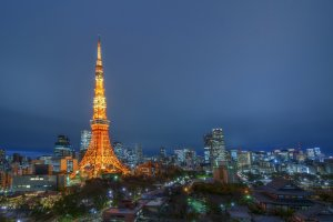 This is the type of view you can see from the Tokyo Tower side.