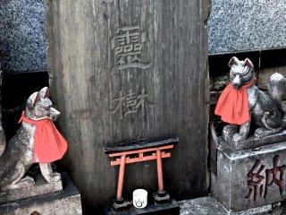 曹洞宗の寺院ではあるが、狐と赤い鳥居が神道の軌跡を物語る
