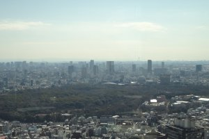 View of Yoyogi Park...and beyond.