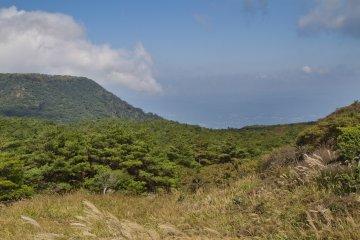 이오산의 풀밭을 가로질러 소나무 위를 지나 평평한 고시키산까지