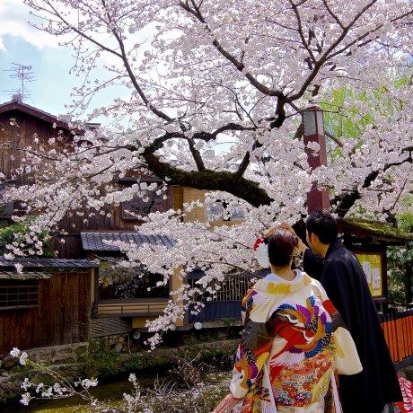 Phố Shirakawa Gion ở Kyoto