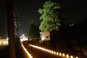 Низкая подсветка освещает местную дорогу