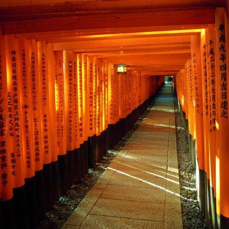 เยี่ยมชมศาลเจ้าอินาริที่เกียวโต