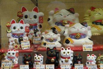 <p>แมวกวักก็มีขายที่ถนนนากามิเสะ</p>