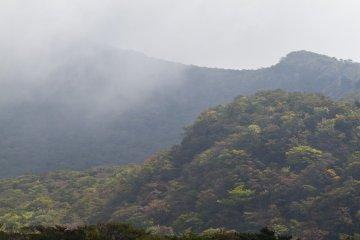 카라쿠니 산의 불규칙한 모습